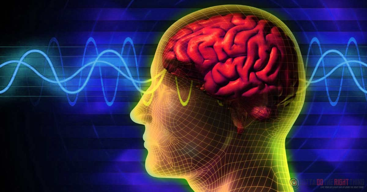 The Best Way To Reboot Your Brain, Increase Energy and Alertness in 15 Minutes