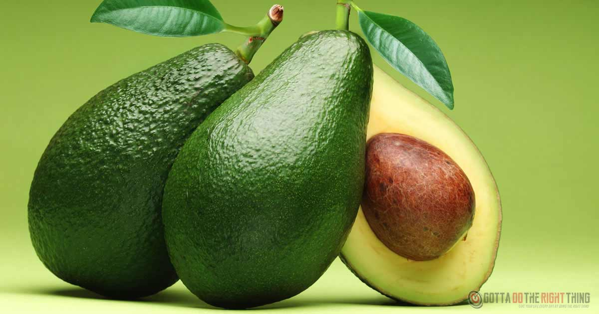 This Is What Will Happen To Your Body If You Consume Avocado Every Day