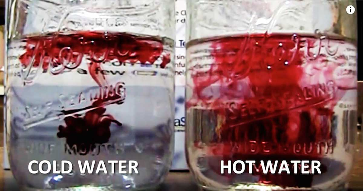 What Is Better for Your Health - Cold Water or Warm Water?