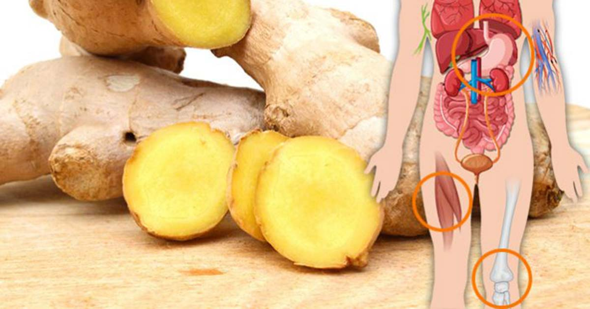 Your Body Will Experience These Benefits If You Consume Ginger For A Month
