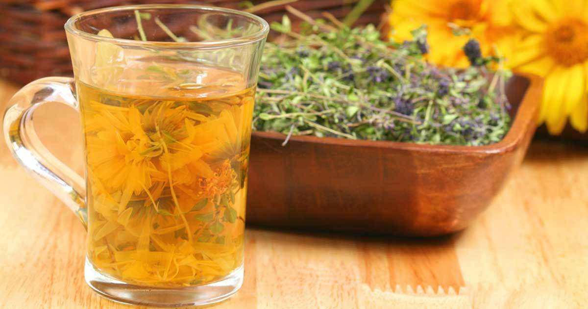 A Herbal Remedy for Treating Fibromyalgia, Chronic Fatigue, Thyroid Problems, and More