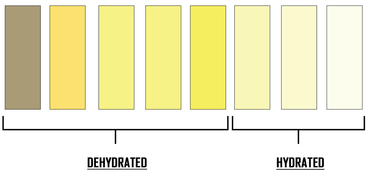 What Does the Color of Our Urine Say About Our Health