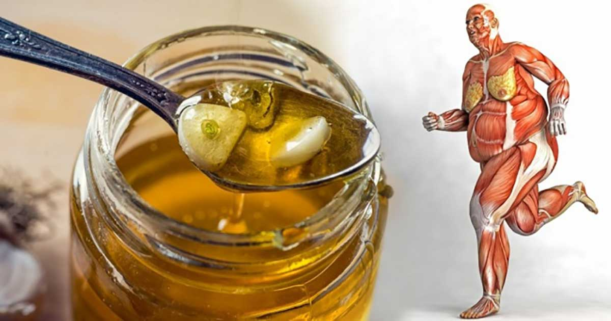 Eat Honey Every Day And These 10 Things Are Going To Happen To Your Body