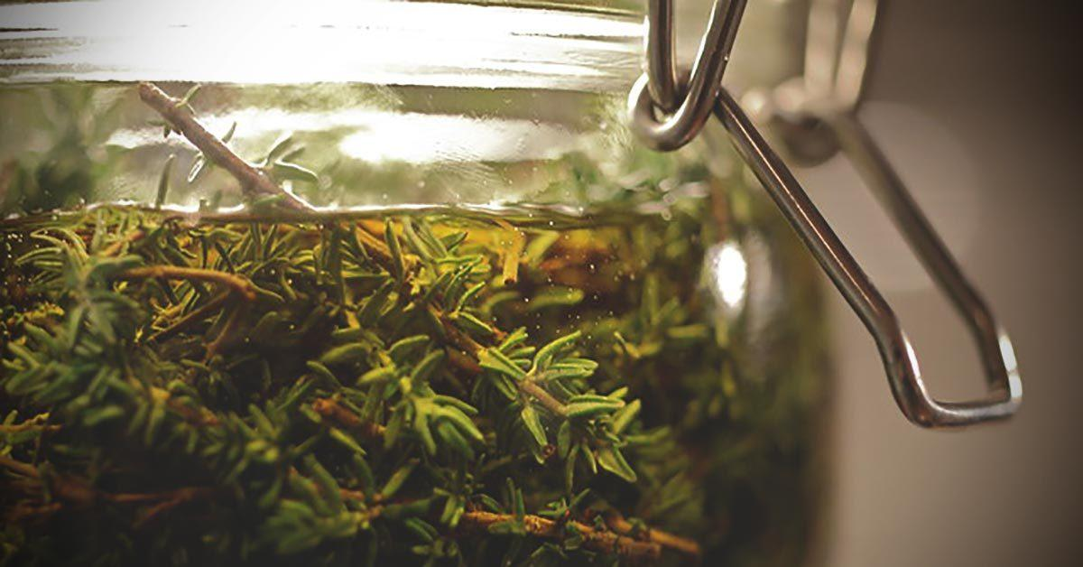 Oregano Oil Why It's So Powerful and How to Choose The Best One